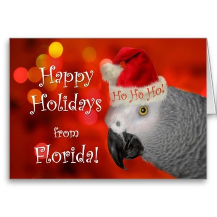 christmas_from_florida_african_grey_parrot_card-r98ccc8b4dd7c40a5a1643f5eaf8e62e4_xvuak_8byvr_512